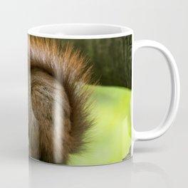 Red squirrel eating nuts Coffee Mug