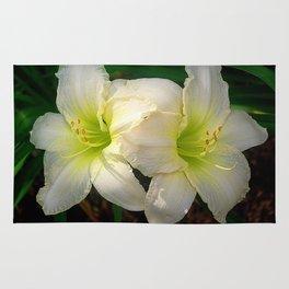 Creamy white daylily flowers Rug