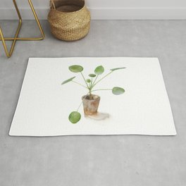 Pilea. Chinese money plant. Rug