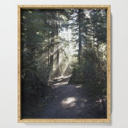 Forest Path Serving Tray