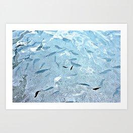 Walking on fishes Art Print