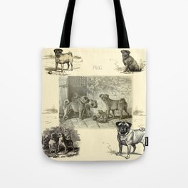 PUG DOGS Illustration Tote Bag