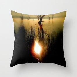 Light & Reflections Throw Pillow