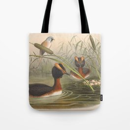 040 Horned Grebe podiceps auritus4 Tote Bag