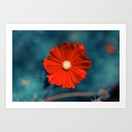 Cool Red Art Print
