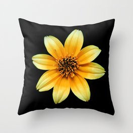 Sun Throw Pillow
