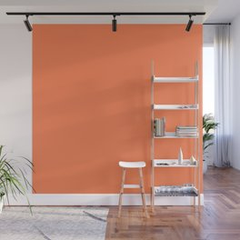 Simply Sunny Warm Coral Plain Color Wall Mural