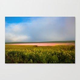 Land of Plenty- Field of Pink and Yellow Flowers in Nebraska Canvas Print
