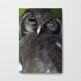 With One Eye Open Metal Print