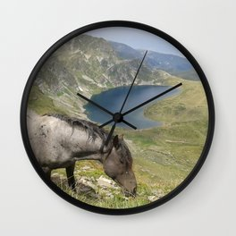 Horse near lake  landsape view Wall Clock