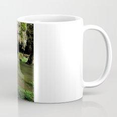 Waterfall at Swallet Falls Coffee Mug