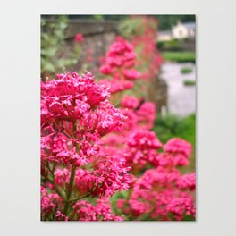 Usk Bridge Canvas Print