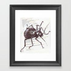 Black Beetle Framed Art Print