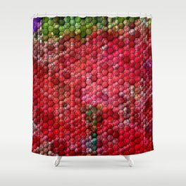 Play with honeycombs ... Shower Curtain