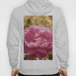 Pink Vintage Flower Hydrangea Hoody