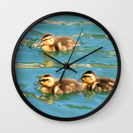Mallard Ducklings Wall Clock