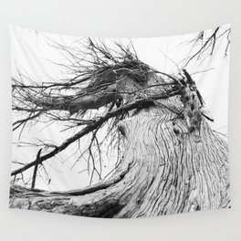 050 | hill country Wall Tapestry
