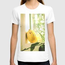 Winte Squash T-shirt