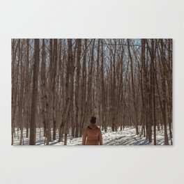 forest #8 Canvas Print