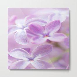 Lovely Lilac Blossom Bokeh Background #decor #society6 #buyart Metal Print