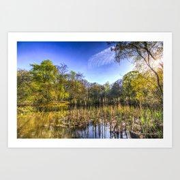 The Bulrush Pond Art Print