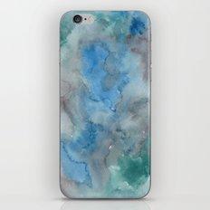 #81. DAN iPhone & iPod Skin