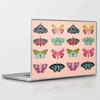 study Laptop & iPad Skins featuring Lepidoptery No. 1 by Andrea Lauren  by Andrea Lauren Design