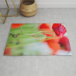 Tender shot of red poppies on the field over blue sky Rug