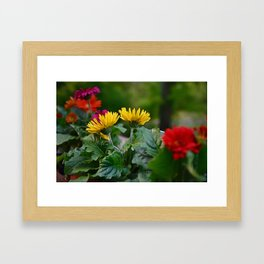 Spring Colors Framed Art Print