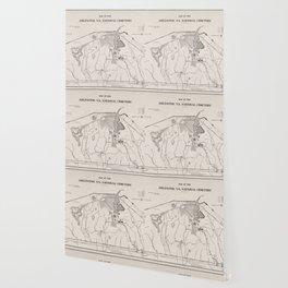 Vintage Map of Arlington National Cemetery (1901) Wallpaper
