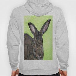 Tango the rescue rabbit Hoody