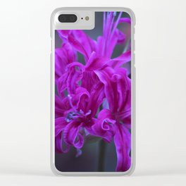 Longwood Gardens Autumn Series 239 Clear iPhone Case