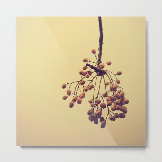 Autumn life (IV) Metal Print