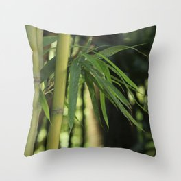 Bamboo Thicket Throw Pillow