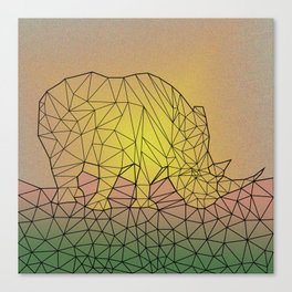 Rinometric Canvas Print