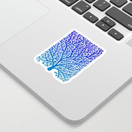 Fan Coral – Blue Ombré Sticker