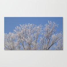 Frosty Beauty Canvas Print