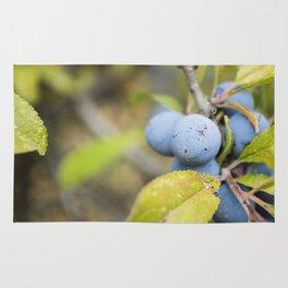 Blue fruits Rug