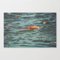 Fish, Borneo Canvas Print