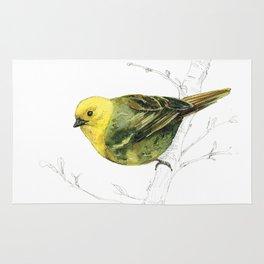 Mr Mohua , yellowhead New Zealand native bird Rug