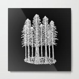 Coastal Redwoods Cathedral Ring Sketch - White Metal Print