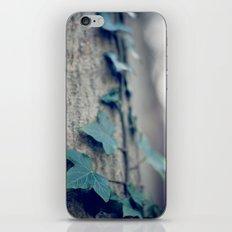 Sleeping Ivy iPhone & iPod Skin