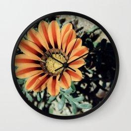 Flower in Recreation Area  Wall Clock