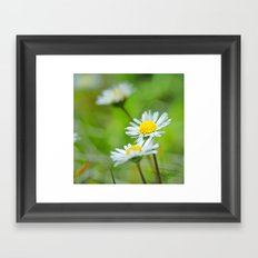 Dream flowers Framed Art Print