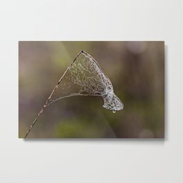 the net Metal Print
