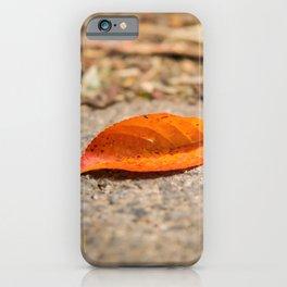 Orange leaf lying on the street iPhone Case