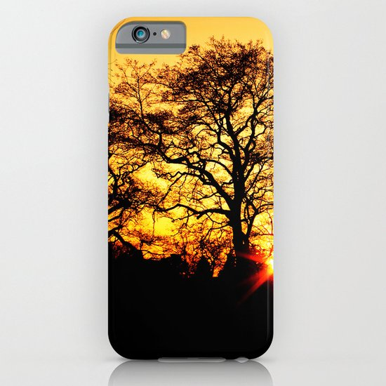 Tree with Sunset iPhone & iPod Case