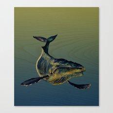 Lone Whale  Canvas Print