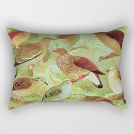 Amazonian Birds by Göldi & Emil August Belem Brazil Colorful Tropical Birds Scientific Illustration Rectangular Pillow