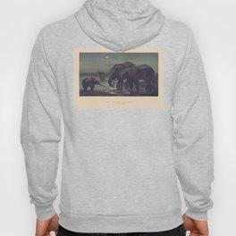 The African Elephant Hoody